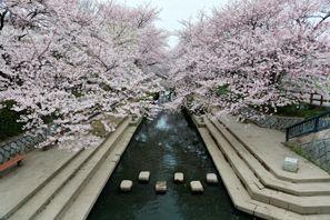 Konosu (Saitama)