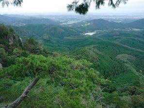 Utsunomiya (Tochigi)